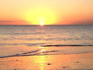 something fresh sunset